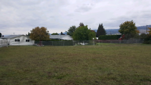 4.5 acre pasture for horses