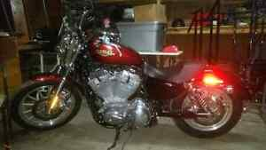 Harley Davidson 883 Low VERY LOW KM!! PERFECT CONDITION