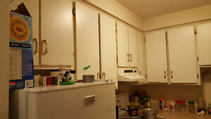 One bedroom apartment for rent (close to MUN and Avalon Mall) St. John's Newfoundland image 9