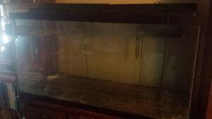 110 Gal Fish tank