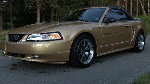 2000 Ford Mustang GT convertible!! For sale or trade!!!