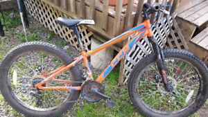 CCM 24+ fat wheel bike