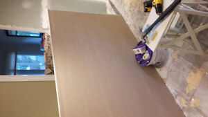 2 full sheets drywall: mould resistant