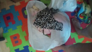 Bag of baby girl clothes