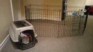 Small Pet Carrier and Playpen