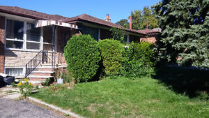 3 Bedroom House in the heart of North York