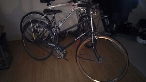 Used Raleigh Cruiser