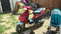 gimelli 50cc scooter