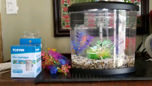Betta fish tank everything you need just plug it in