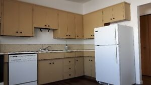 Spacious 2Bdr Lower Level Suite in Desirable Bowness NW
