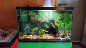 Fish tank kit