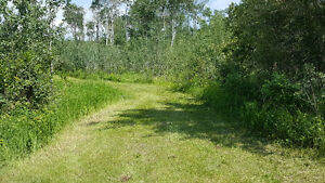 ACERAGE, LILY LAKE ESTATES, LAND FOR SALE