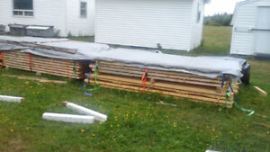 2 x 4 wood for sale