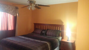 $40 ROOM 3 DAYS MIN. SHORT AND LONG TERM RATES AVAILABLE
