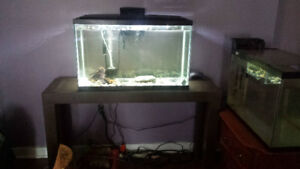33 gal fish tank and stand
