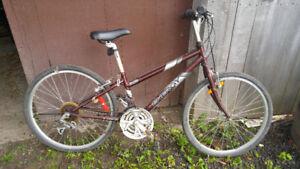 2 vélos 1 brun-cuivre et un bleu marque Louis Garneau