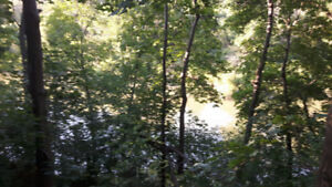 BEAUTIFUL 1.3 ACRE SECLUDED RIVERFRONT PROPERTY