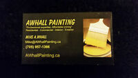 Insured Painter for hire