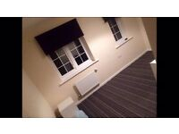 Lovely double room to rent in new build apartment. Yeovil, Somerset.