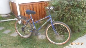 Two Road Biles  1-Ladies 18 Speed  1Automatic 6 Speed