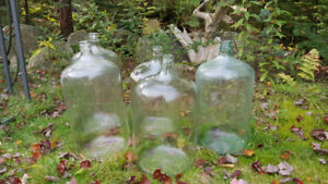 20 liter glass bottles X 5