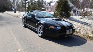 Mustang gt supercharge 2004