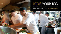 CACTUS CLUB CAFE | Hosts, Expos, Servers, Line Cooks needed!