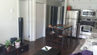 Partially Furnished 1 bedroom apartment w. IN-SUITE LAUNDRY!!
