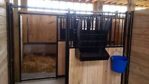 Horse boarding Stratford Kitchener Area image 1