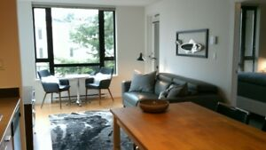 LOCATION,LOCATION-UPSCALE FULLY FURNISHED CONDO-DOWNTOWN-1BED+DE