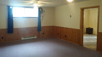 Big one bedroom basement apartment in the country