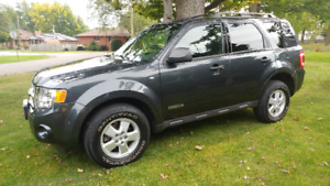 2008 Ford Escape XLT SUV, Crossover 4WD LOW Ks