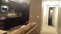 Fully furnished 2 BR basement suite for rent as of Aug 1st.