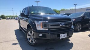 """2019 Ford F-150 """"*DEMO* XLT 3.5L V6 302A"""""""