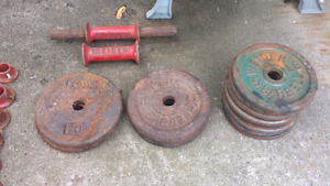 Weider and York Steel Plates