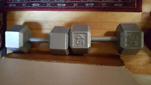 Dumbells / alteres 2 x 45 lbs