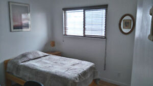 Two fully furnished rooms for rent