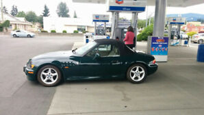 BMW Z3 manual 96 **reduced to pay vet bills*