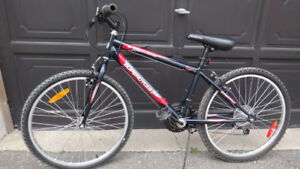 """24"""" Youth Used Supercycle Bike, Good Condition"""