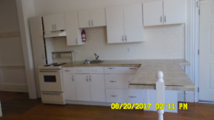 Gorgeous 1 bedroom apt in Quiet Heritage building