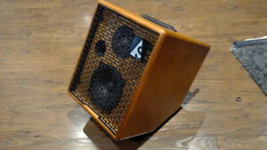 Godin Acoustic Solutions ASG 75 Acoustic Guitar Amp/Vocal Combo