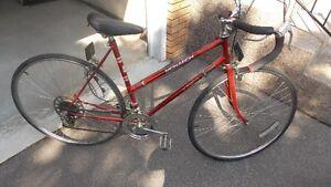 Ladies 10 speed bike