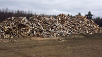 FIREWOOD FOR SALE IN MONCTON AREA