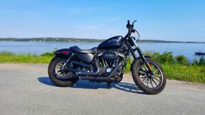 2012 Harley Davidson Sportster Iron 883 **Price is firm**