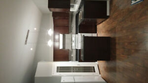 brand new apartment for rent in Dauphin