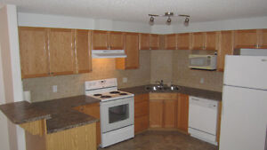 Available 1 B/R Bath Condo for 3 month only- Northeast Clareview