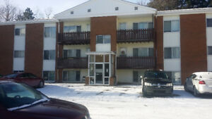 Large Updated 2 bdrm $785/mth, last month free on 12 mth lease