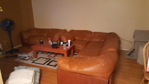 Sectional and love seat