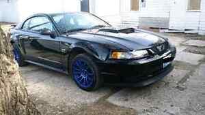 02 Mustang GT V8