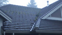 Roof Cleaning , Moss Removal , Moss Prevention, Gutter Cleaning